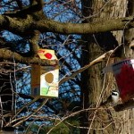 Bird Feeders…. From Recyclables!