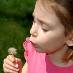 Cheap Thrills — Inspired by Dandelions
