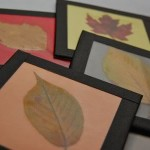 400th Post — Fall Leaf Coasters