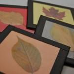 400th Post — Fall Leaf Coasters