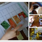 Free Printable Garden Journal Pages