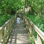 Nature Hike…with a stroller?