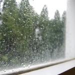 $5 Friday — Rainy Day Fun