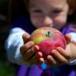 Organic (Frugal) Goodness