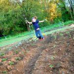 Sunday Snapshot — Rock Star Gardening!