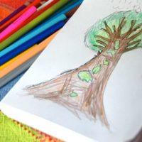 Nature Drawing – Seasonal Trees