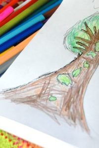 Nature Drawing – Seasonal Trees