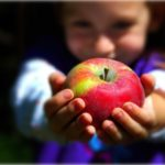 Apple Crafts and Activities Galore!