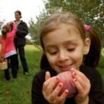 Simple Pleasures Saturday — Apples!!