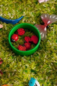 7 Fun Ideas for Sensory Bins