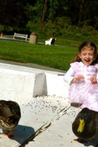 Cheap Thrills — Feeding Ducks