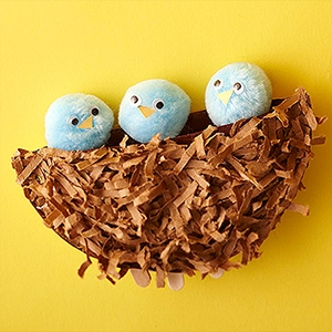 This adorable Paper Plate Nest looks like so much fun to make nK8bWauV