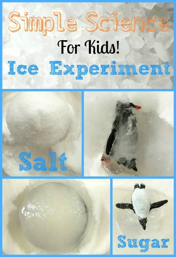 This simple ice experiment is easy to prepare and is a great way to get kids excited about science!