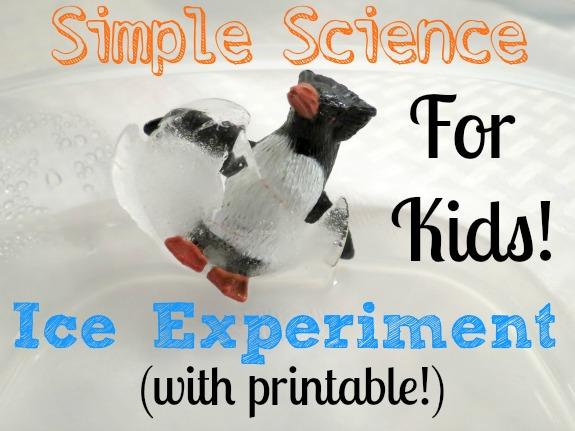 Simple Science Ice Experiment
