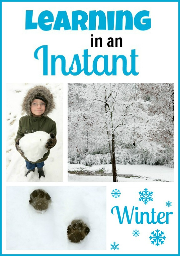 Learning In An Instant: Winter