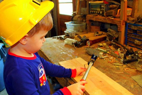 Building Bird Feeders with Real Tools