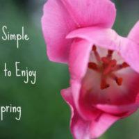 Cherishing Simple Pleasures in Spring