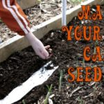 Gardening with Kids — Make Your Own Seed Tape