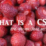 What is a CSA and Why You Should Get One