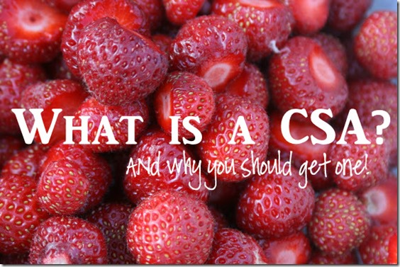 What is a CSA And Why You Should Get One! Includes a recipe for asparagus pesto