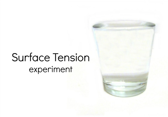 Surface Tension Experiment