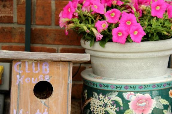 Creating a Wildlife-Friendly Backyard