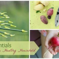 Food Essentials for a Healthy Household