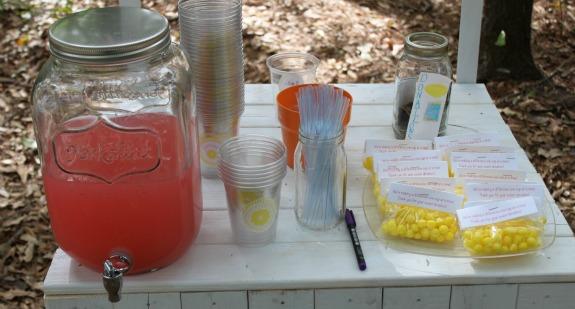 Host an Alex's Lemonade Stand