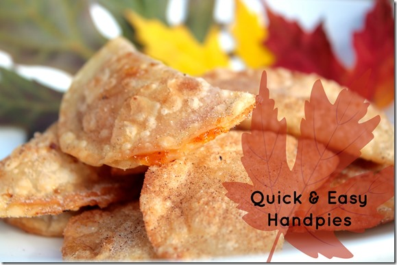 Fall Dessert Ideas  Quick   Easy Mini Handpies   Inner Child Fun ELc5b0Kg
