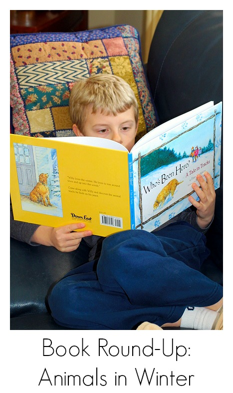 Books About Animals in Winter