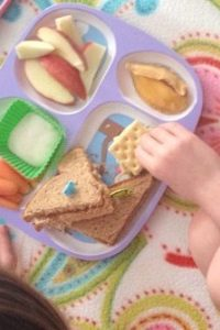 Let's Have an Indoor Picnic!