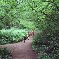 Five Amazing Hikes to Take With Kids