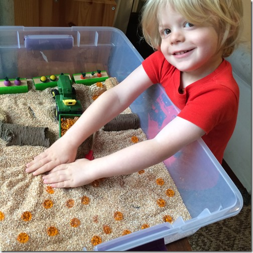 Homeschooling with Toddlers -- Sensory Bins