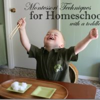 Homeschooling with Toddlers – Montessori Trays