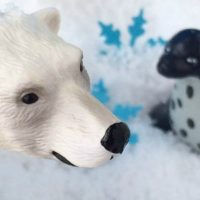 Polar Animals Sensory Bin