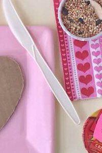 Make a Bird Feeder Kit!