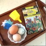 How to Make Seed Bombs in Eggshells