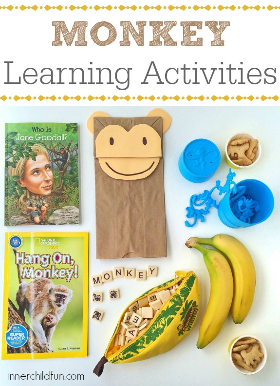 Monkey Learning Activities -- these look like so much fun!