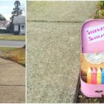 Fun Outdoor Activity Idea