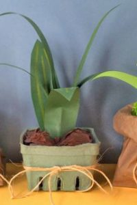 How to Make Paper Plants (Easy)