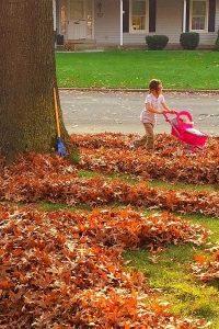 Leaf Maze!