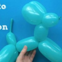 How to Make Balloon Dogs