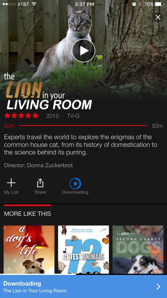 15 Netflix Streaming Downloads for Kids 8-12