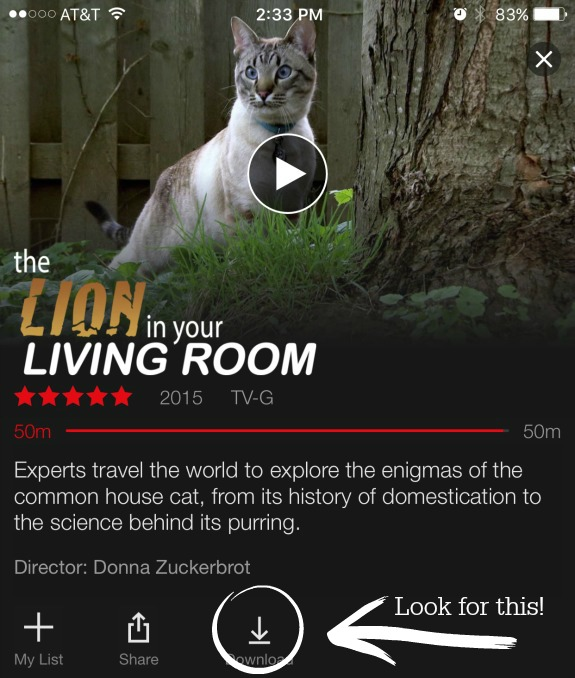 15 netflix streaming downloads for kids 8 12 inner child fun for The lion in the living room netflix