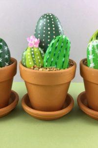 Rock Cactus Garden