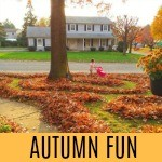 autumn-fun