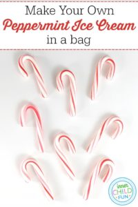 Make Your Own Peppermint Ice Cream in a Bag