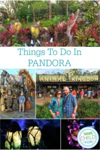 Things to do at Pandora – Must See Attractions